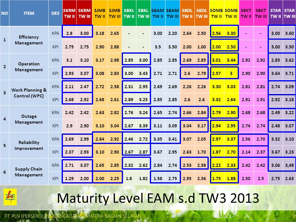 Maturity Level EAM s.d TW3 2013