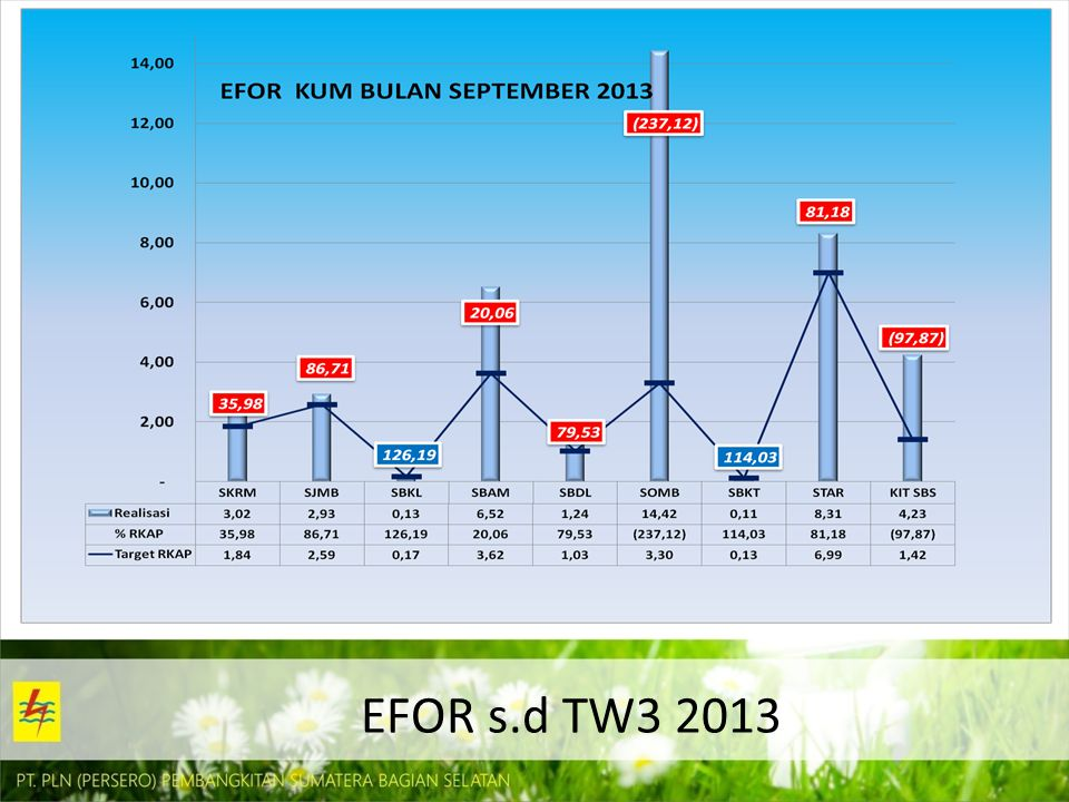 EFOR s.d TW3 2013