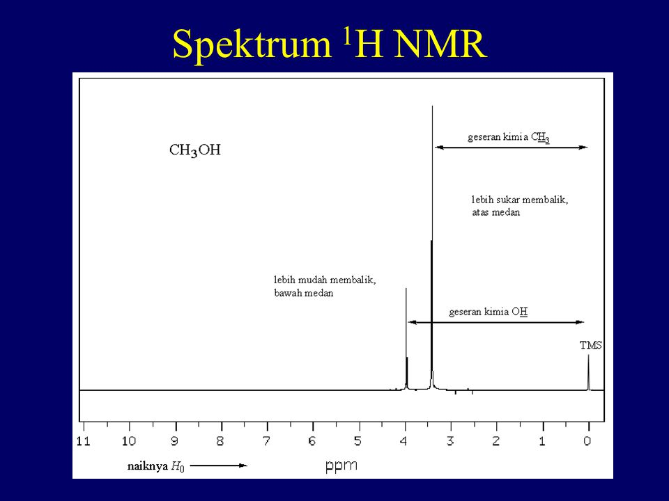 Spektrum 1H NMR