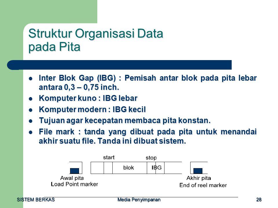 Struktur Organisasi Data pada Pita