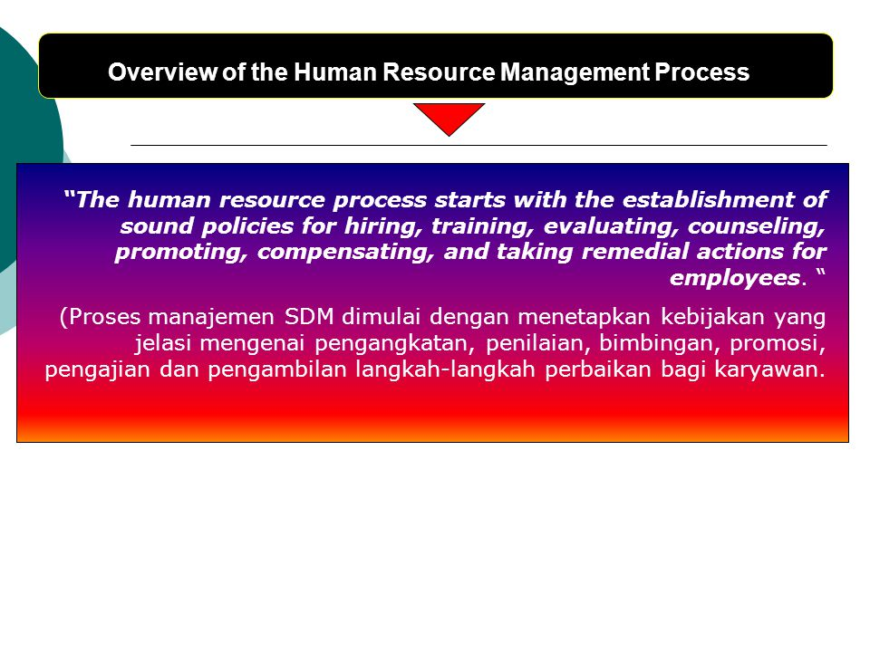 Overview of the Human Resource Management Process