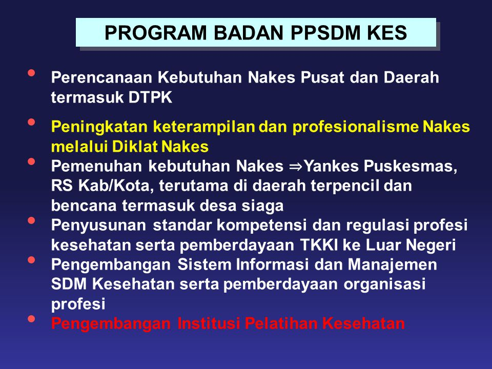 PROGRAM BADAN PPSDM KES