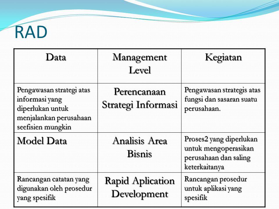 RAD Data Management Level Kegiatan Perencanaan Strategi Informasi