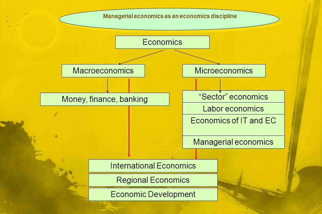 Managerial economics as an economics discipline