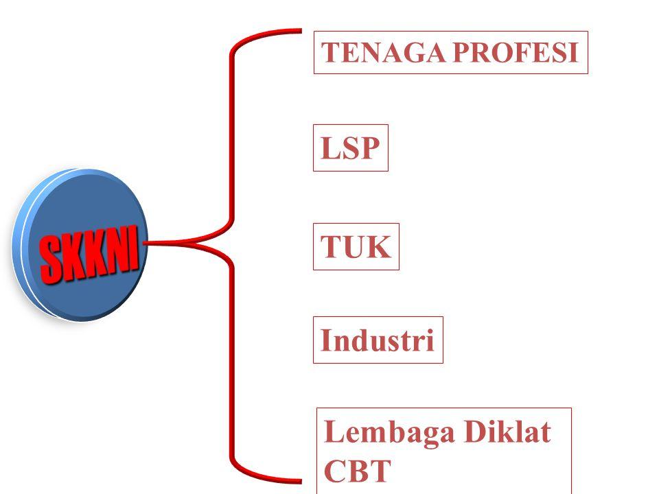 TENAGA PROFESI LSP SKKNI TUK Industri Lembaga Diklat CBT