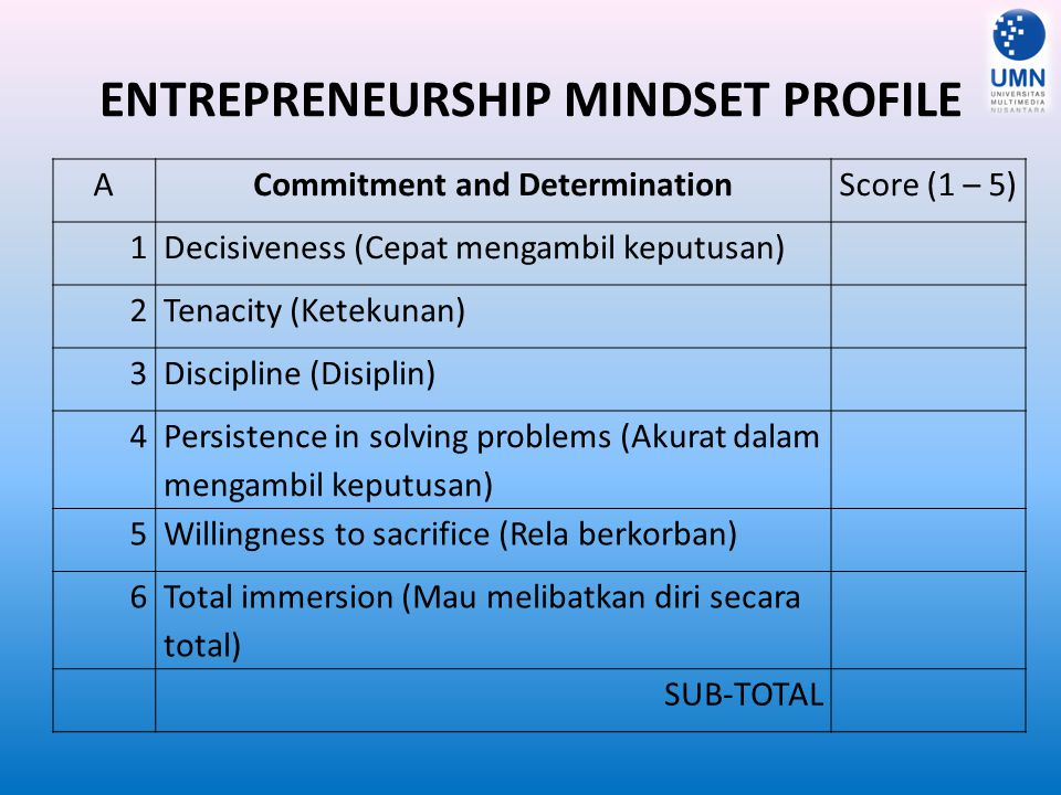 ENTREPRENEURSHIP MINDSET PROFILE