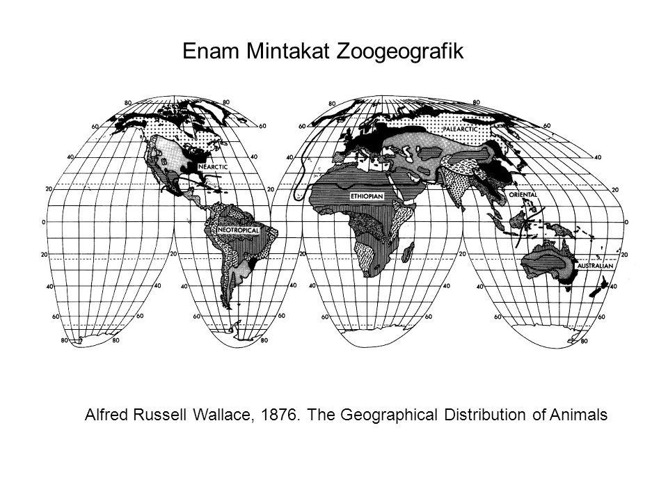 Enam Mintakat Zoogeografik