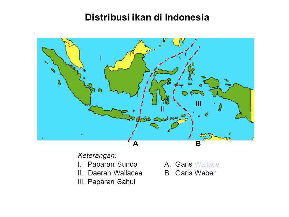 Distribusi ikan di Indonesia