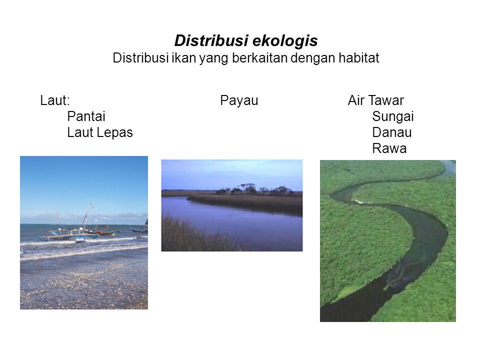 Distribusi ikan yang berkaitan dengan habitat
