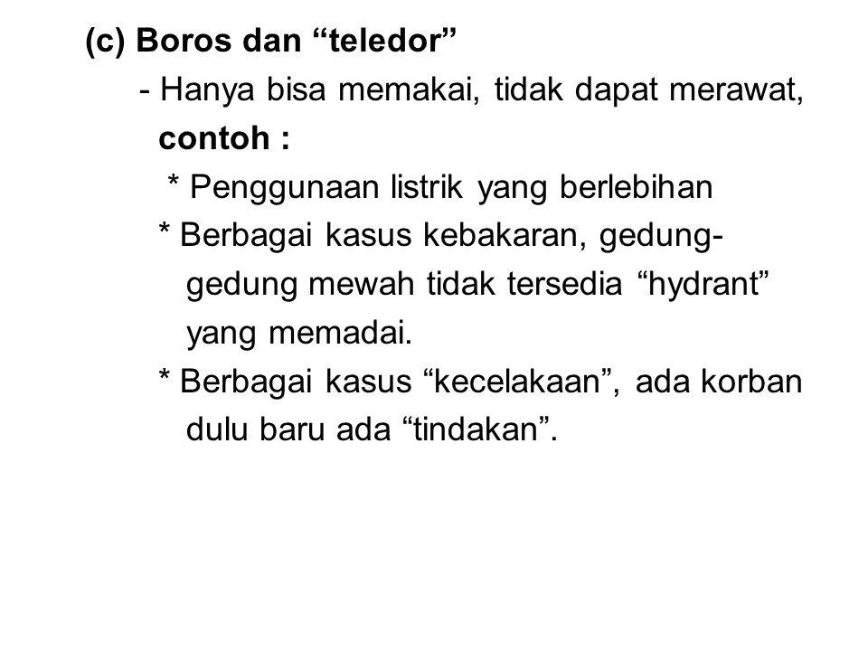 (c) Boros dan teledor