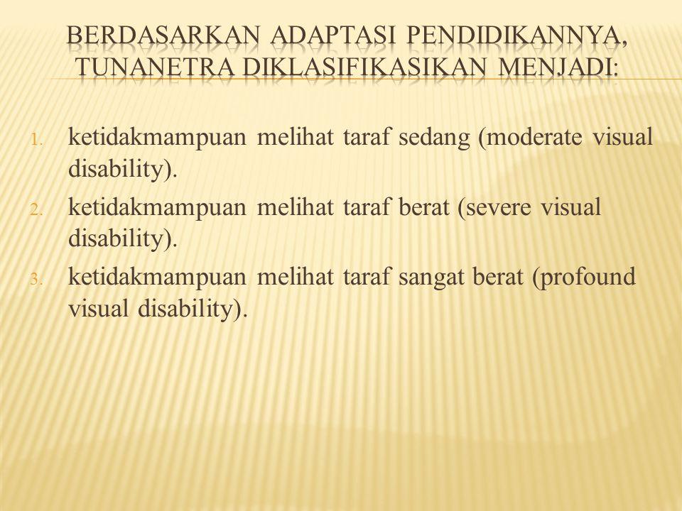Berdasarkan adaptasi pendidikannya, tunanetra diklasifikasikan menjadi: