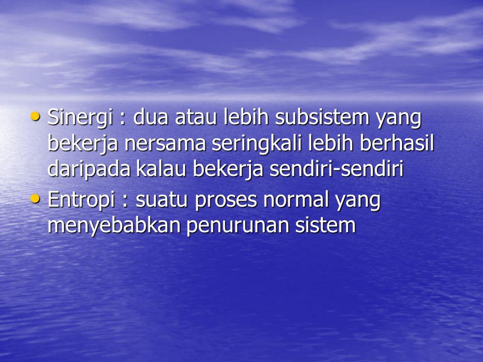 Sinergi : dua atau lebih subsistem yang bekerja nersama seringkali lebih berhasil daripada kalau bekerja sendiri-sendiri