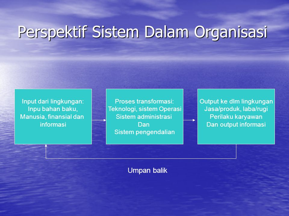 Perspektif Sistem Dalam Organisasi