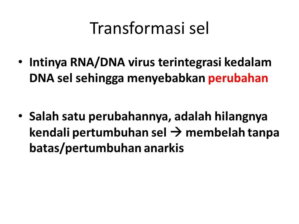 Transformasi sel Intinya RNA/DNA virus terintegrasi kedalam DNA sel sehingga menyebabkan perubahan.