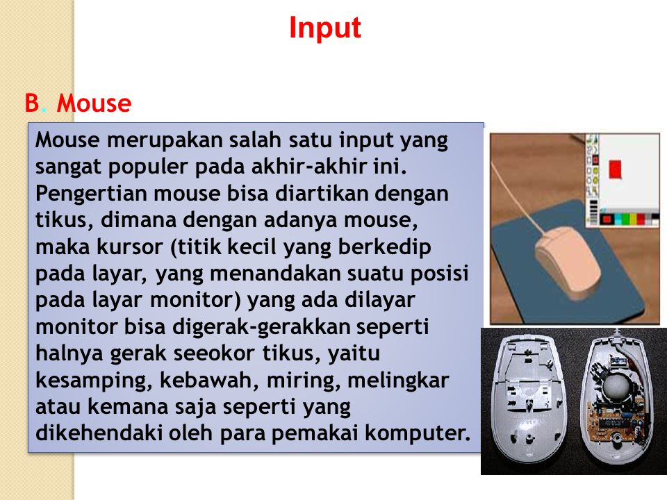 Input B. Mouse.