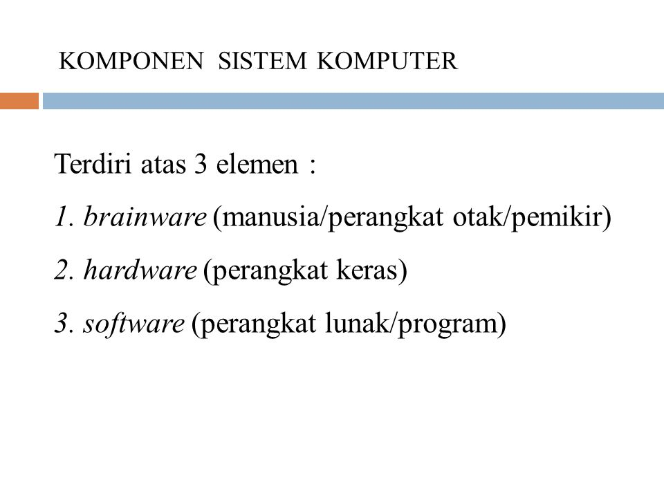 1. brainware (manusia/perangkat otak/pemikir)