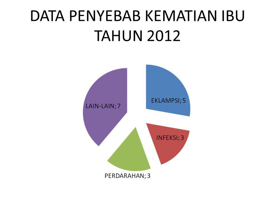 DATA PENYEBAB KEMATIAN IBU TAHUN 2012