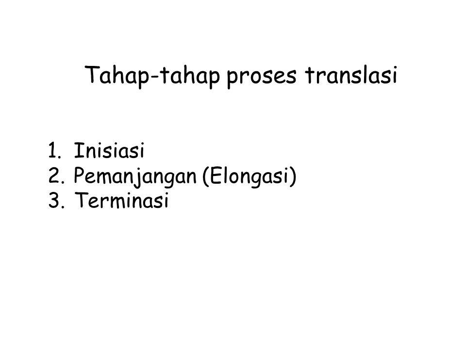 Tahap-tahap proses translasi