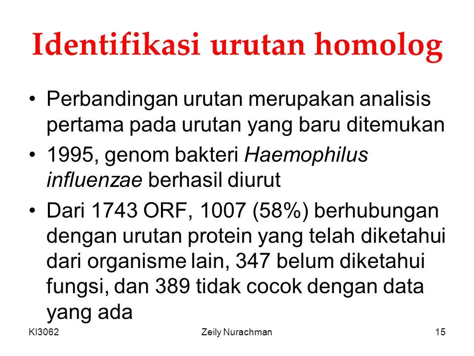 Identifikasi urutan homolog