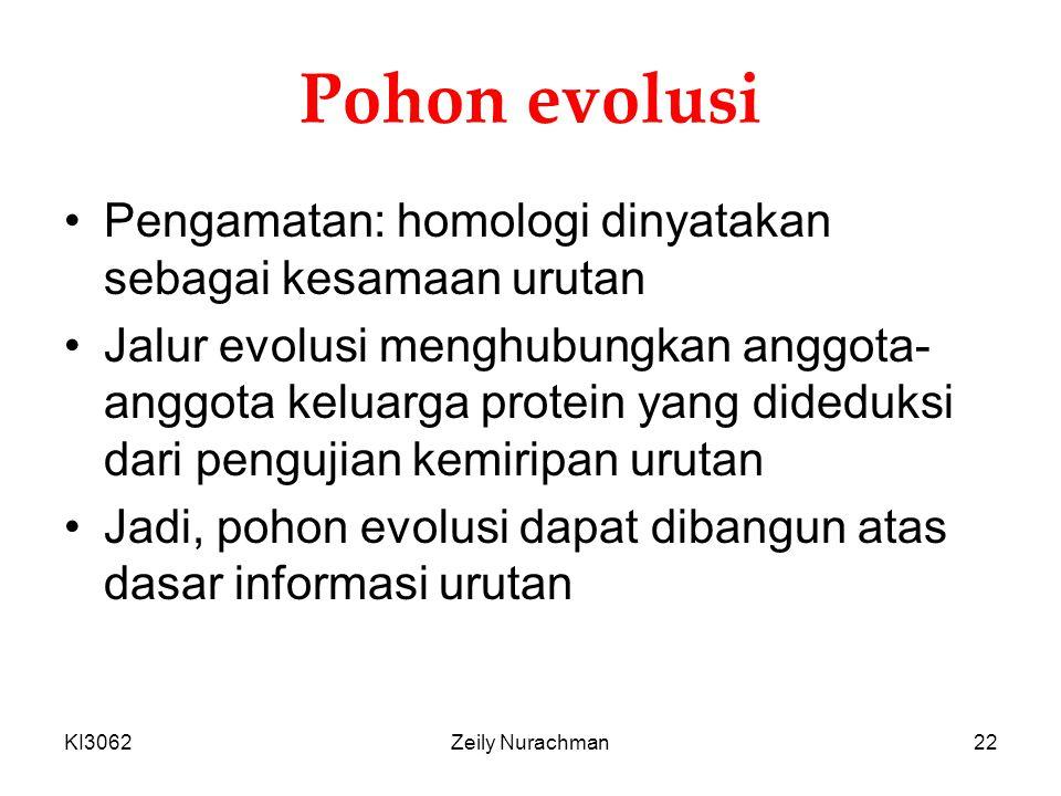 Pohon evolusi Pengamatan: homologi dinyatakan sebagai kesamaan urutan