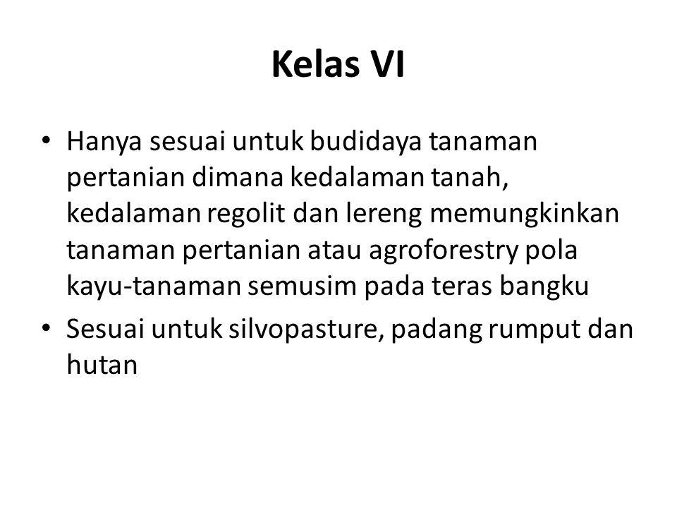 Kelas VI