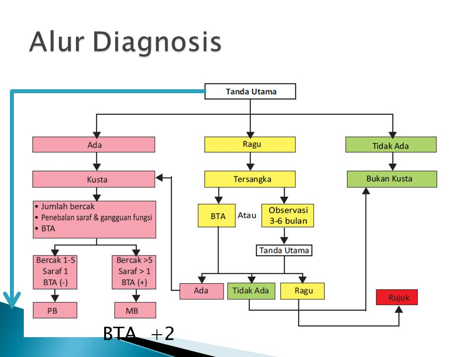 Alur Diagnosis BTA +2