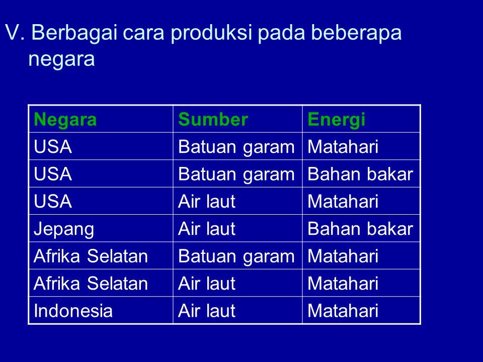V. Berbagai cara produksi pada beberapa negara