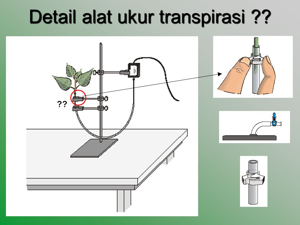 Detail alat ukur transpirasi