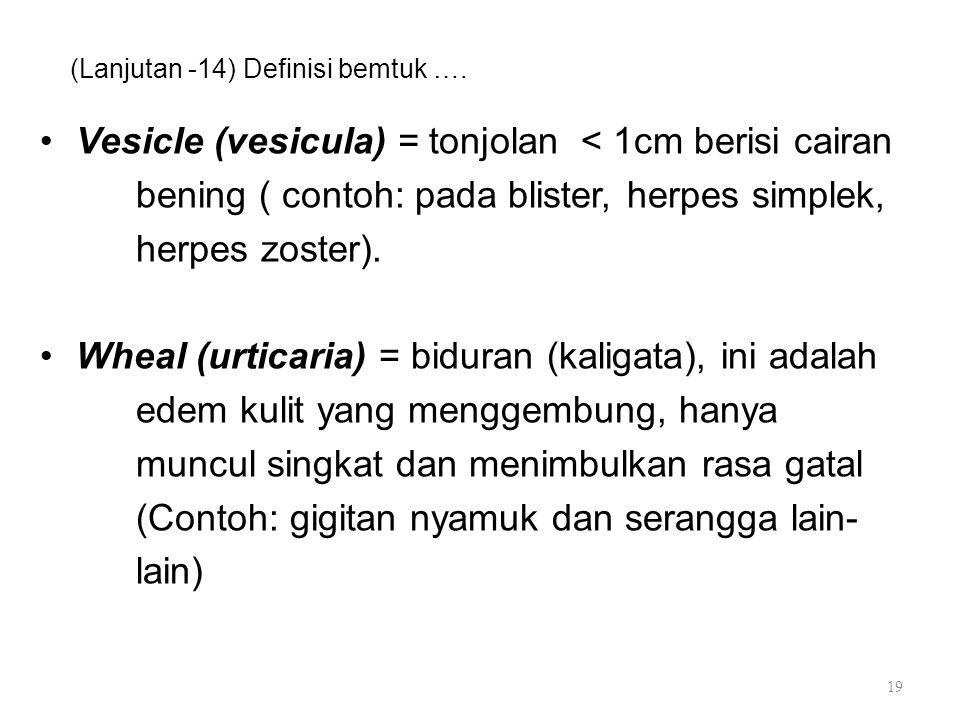 (Lanjutan -14) Definisi bemtuk ….