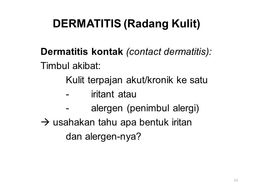 DERMATITIS (Radang Kulit)