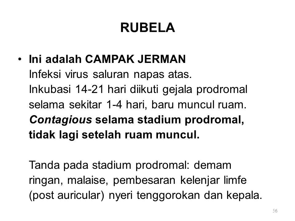 RUBELA Ini adalah CAMPAK JERMAN Infeksi virus saluran napas atas.