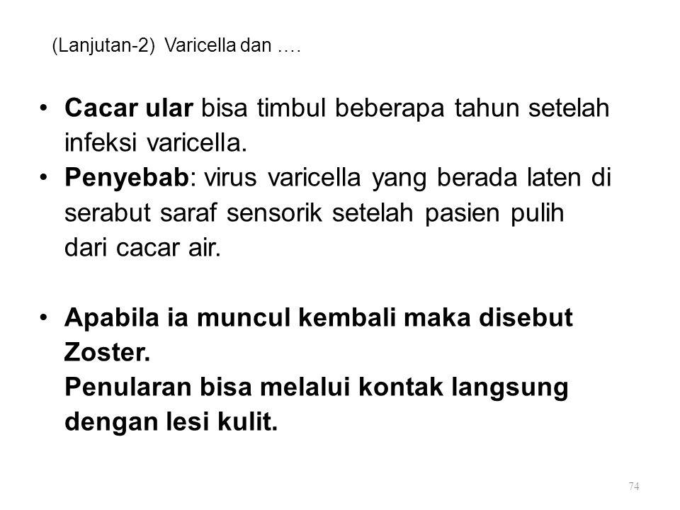 (Lanjutan-2) Varicella dan ….