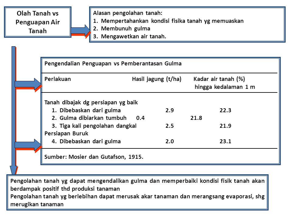 Olah Tanah vs Penguapan Air Tanah