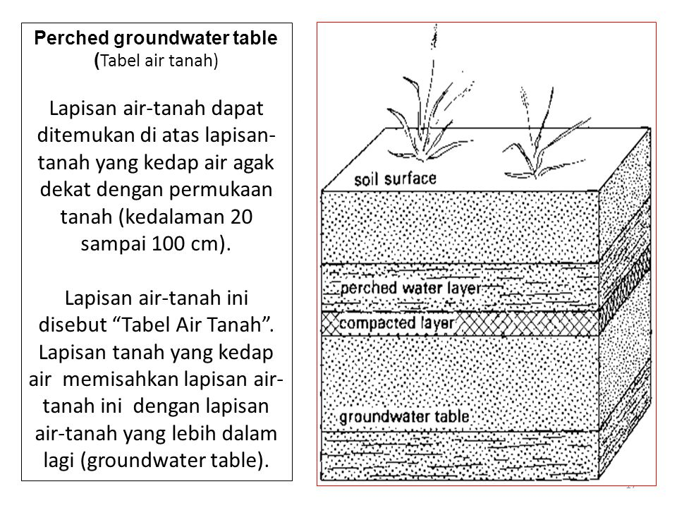 Perched groundwater table