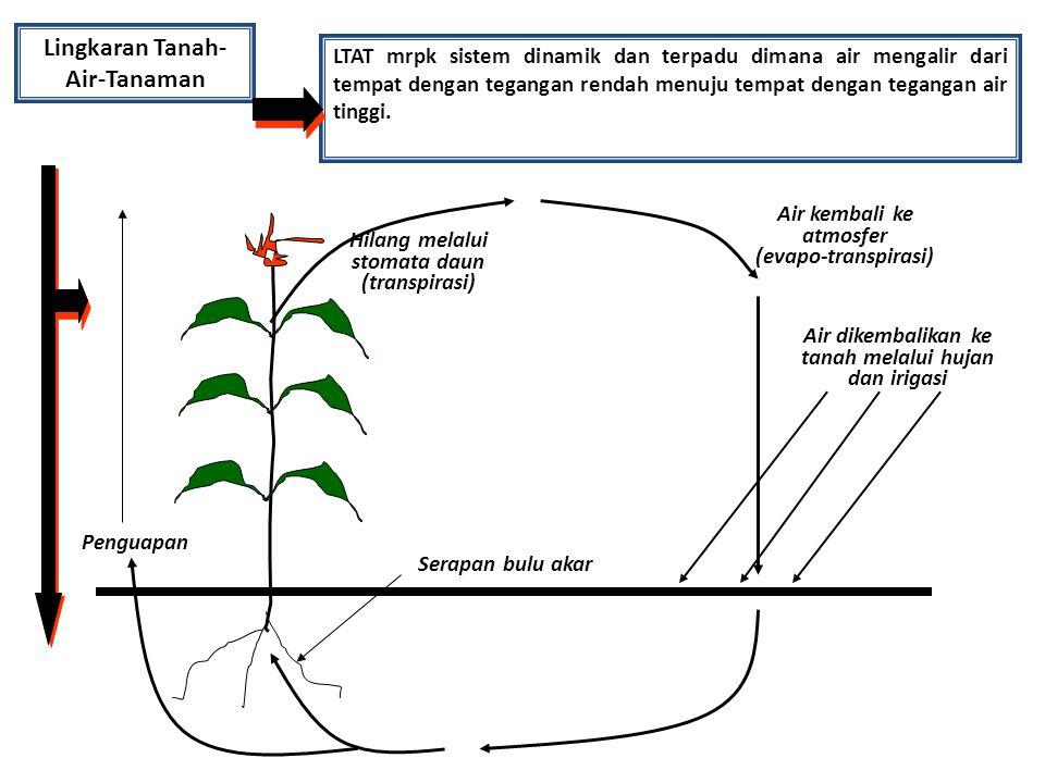 Lingkaran Tanah-Air-Tanaman