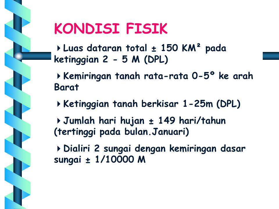 KONDISI FISIK Luas dataran total ± 150 KM² pada ketinggian 2 - 5 M (DPL) Kemiringan tanah rata-rata 0-5º ke arah Barat.
