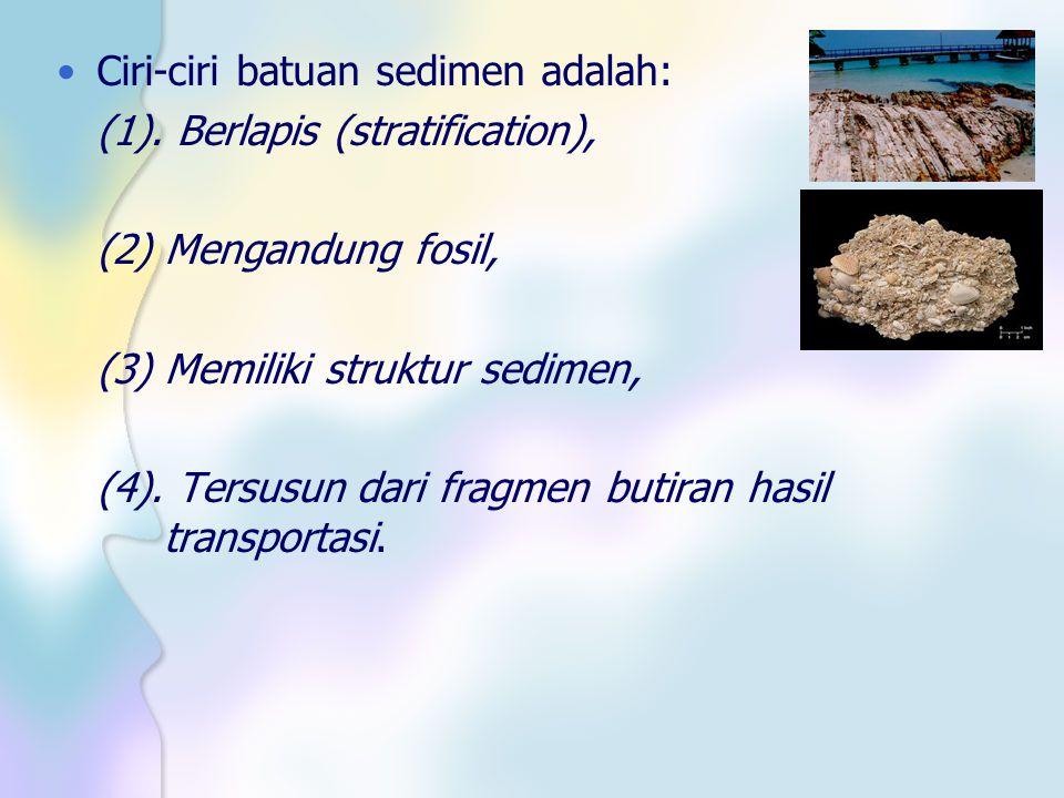 Ciri-ciri batuan sedimen adalah: