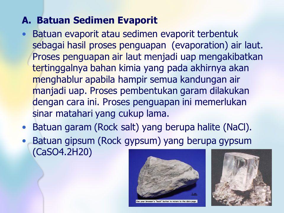A. Batuan Sedimen Evaporit