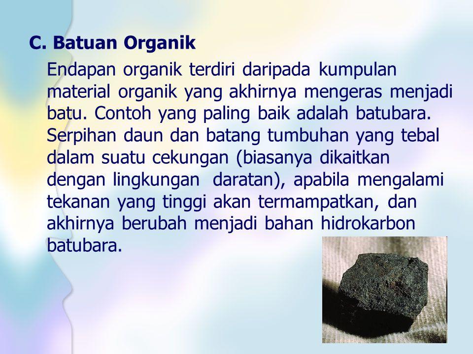 C. Batuan Organik