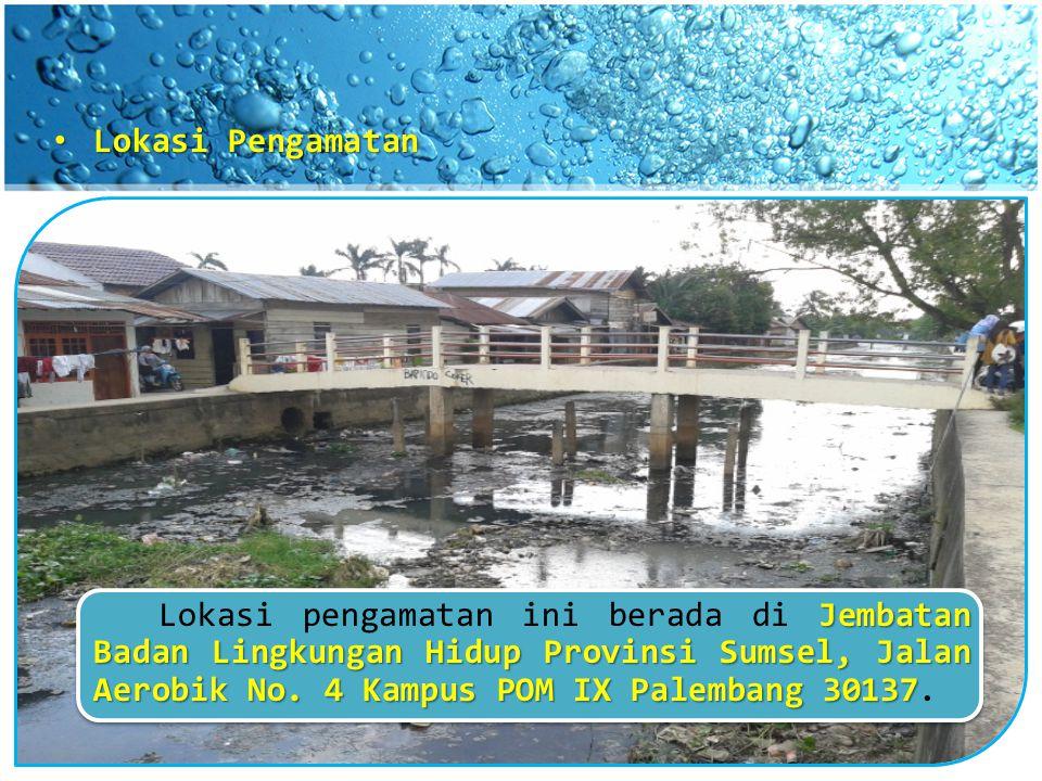 Lokasi Pengamatan Lokasi pengamatan ini berada di Jembatan Badan Lingkungan Hidup Provinsi Sumsel, Jalan Aerobik No.
