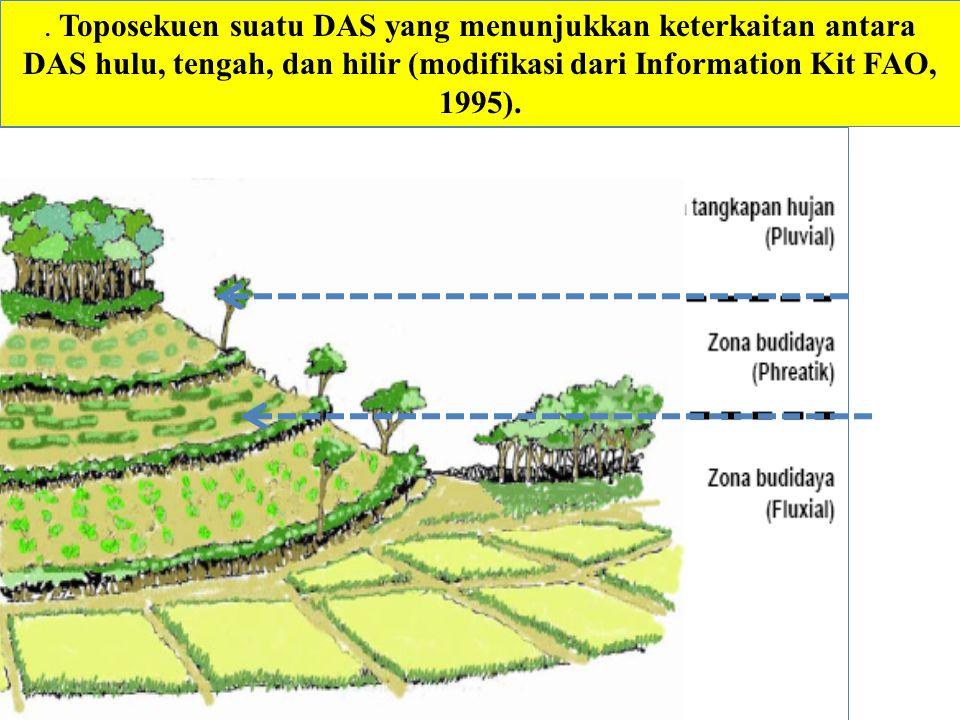 . Toposekuen suatu DAS yang menunjukkan keterkaitan antara DAS hulu, tengah, dan hilir (modifikasi dari Information Kit FAO, 1995).