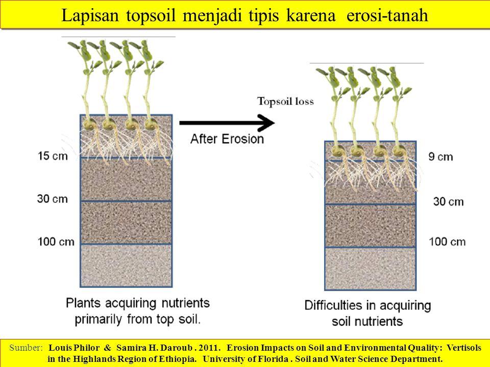 Lapisan topsoil menjadi tipis karena erosi-tanah