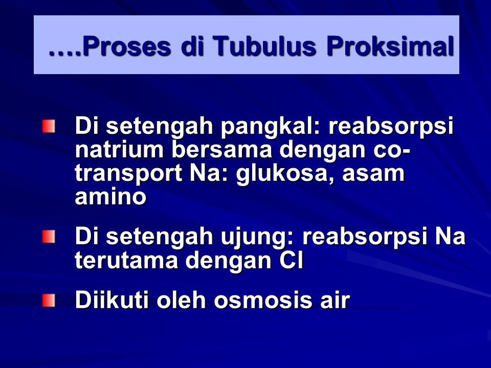 ….Proses di Tubulus Proksimal