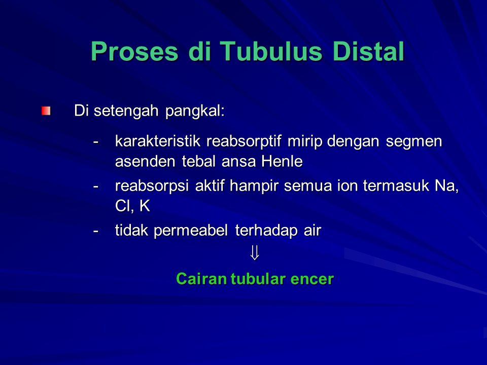 Proses di Tubulus Distal