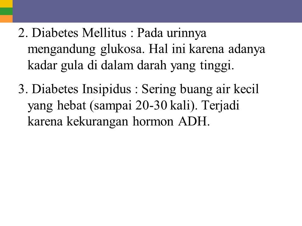 2. Diabetes Mellitus : Pada urinnya mengandung glukosa