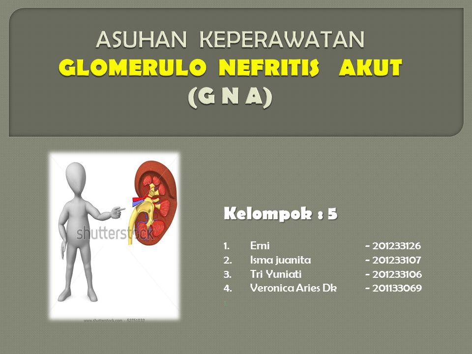 ASUHAN KEPERAWATAN GLOMERULO NEFRITIS AKUT (G N A)