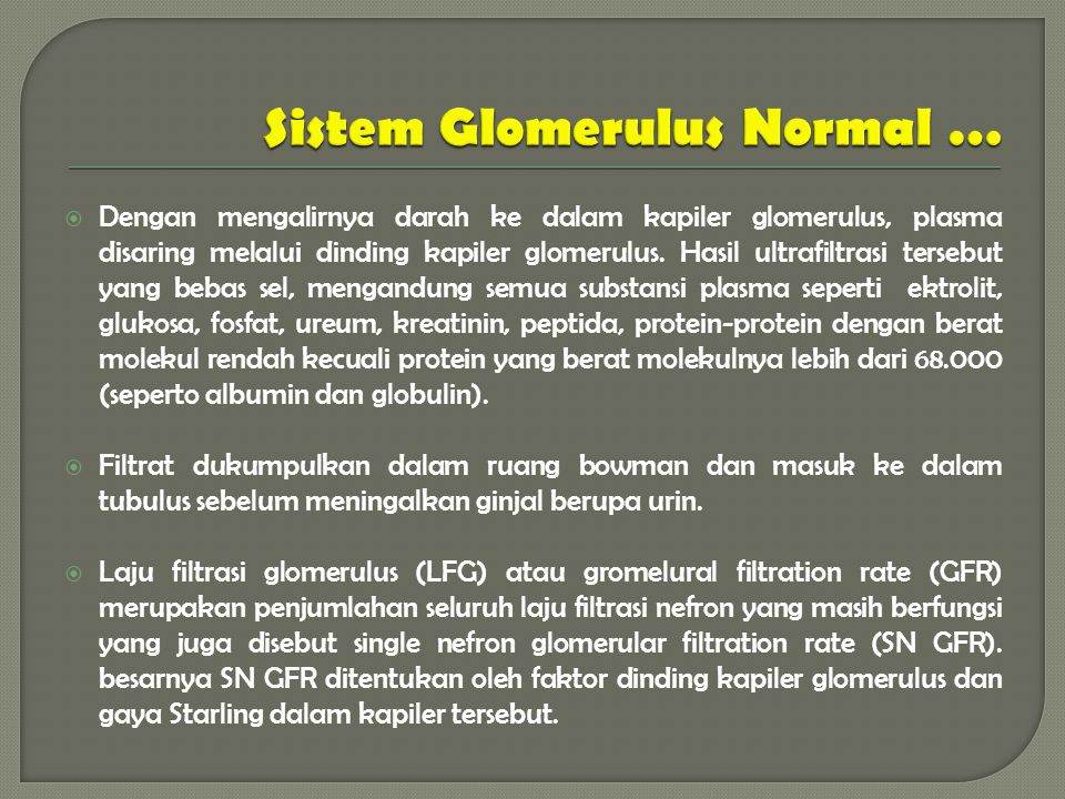 Sistem Glomerulus Normal …