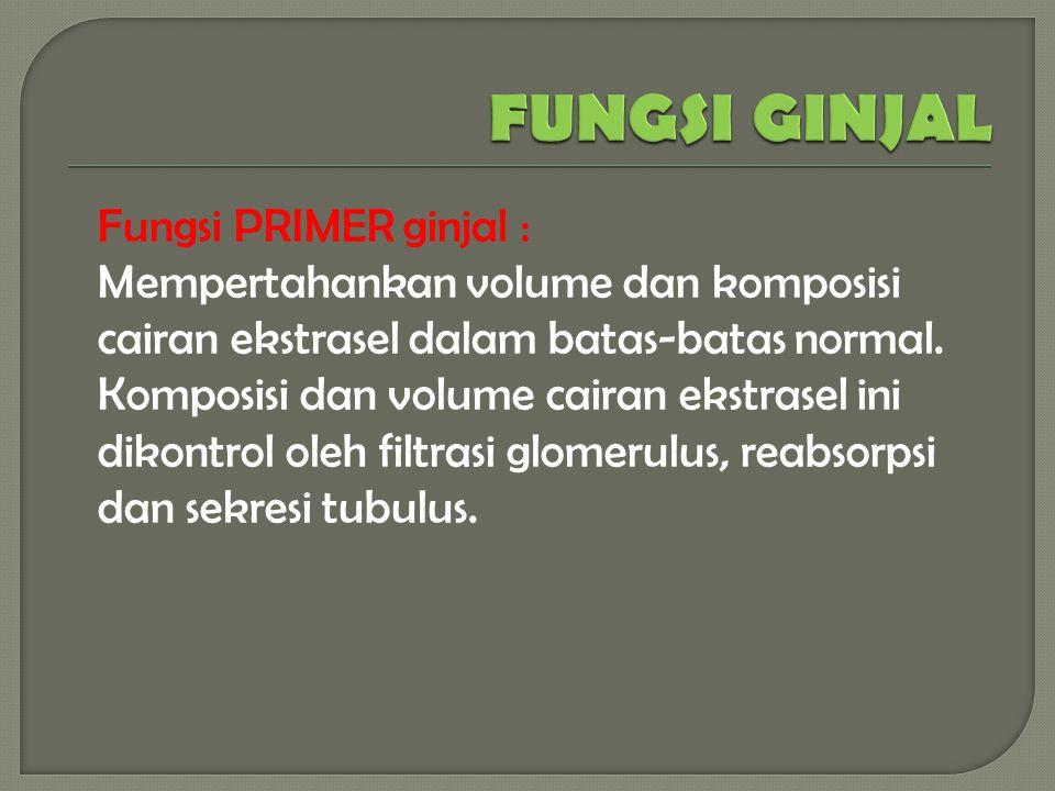 FUNGSI GINJAL Fungsi PRIMER ginjal :