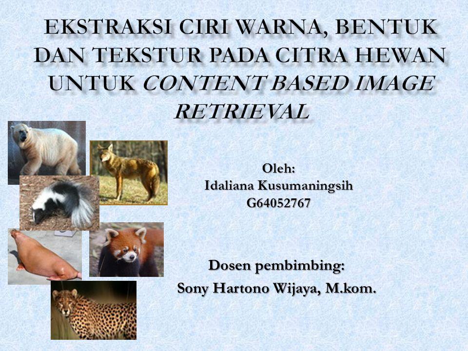 Oleh: Idaliana Kusumaningsih G64052767