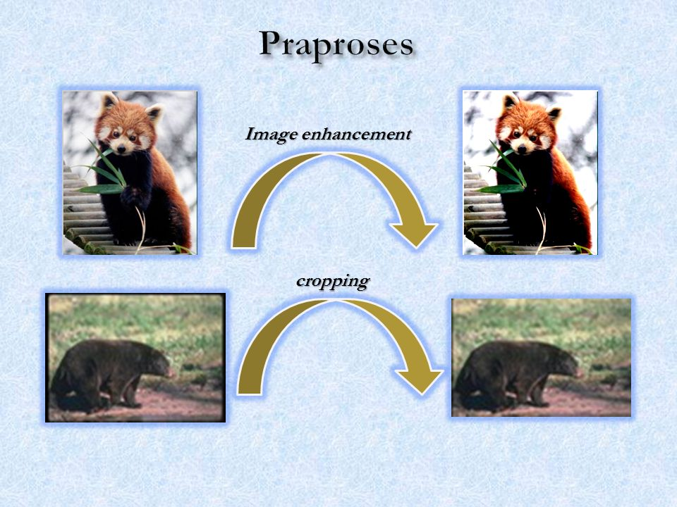 Praproses Image enhancement cropping